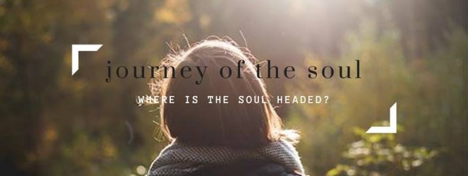 YJP soul.jpg